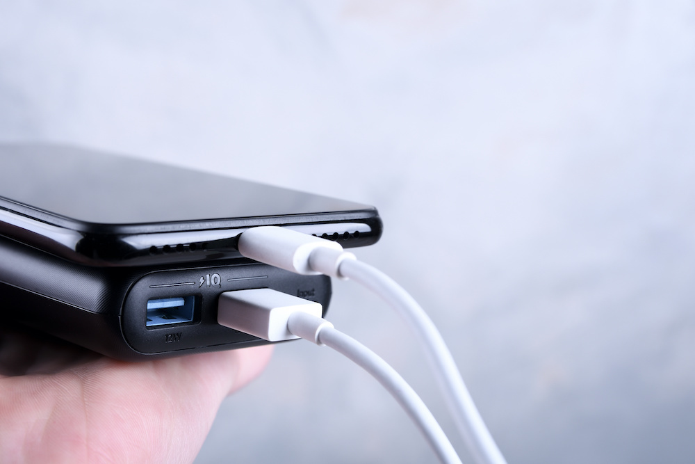 mini max charger review